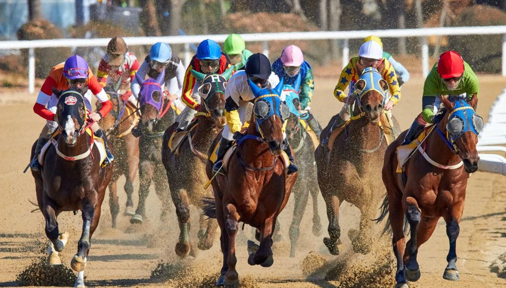 Horse racing, Lexington, Kentucky